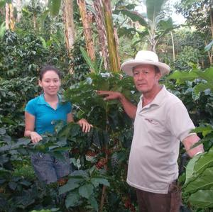 Etnia - Montañita - Colombia - Mellanrostade kaffebönor - 250g
