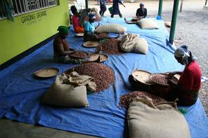 Kakaobolaget - Tanzania Single Origin 74% - Ekologisk förstklassig ursprungschoklad från Österlen - 70 g